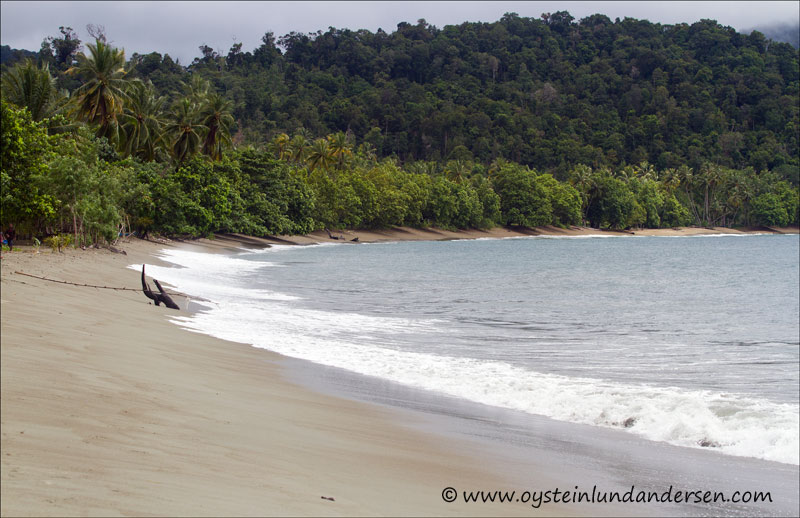 Beach in Amai. Regurlarly visited by Jayapurans during weekends. (14March 2012)