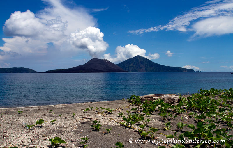 Anak-Krakatau-Feb2012-photo14