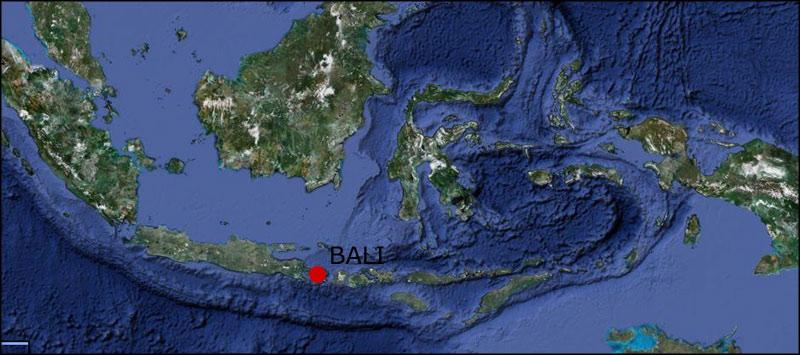 Bali_oysteinlundandersen_logoX2
