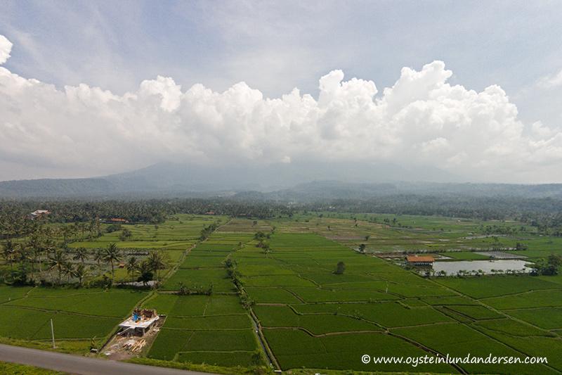 Galunggung-tasikmalaya-ricefields-2014-(DJI00047)