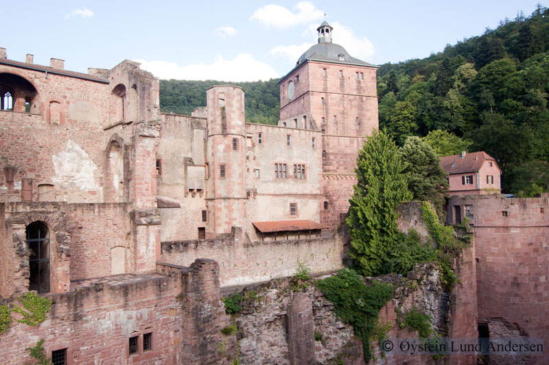The old Heidelberg Castle.