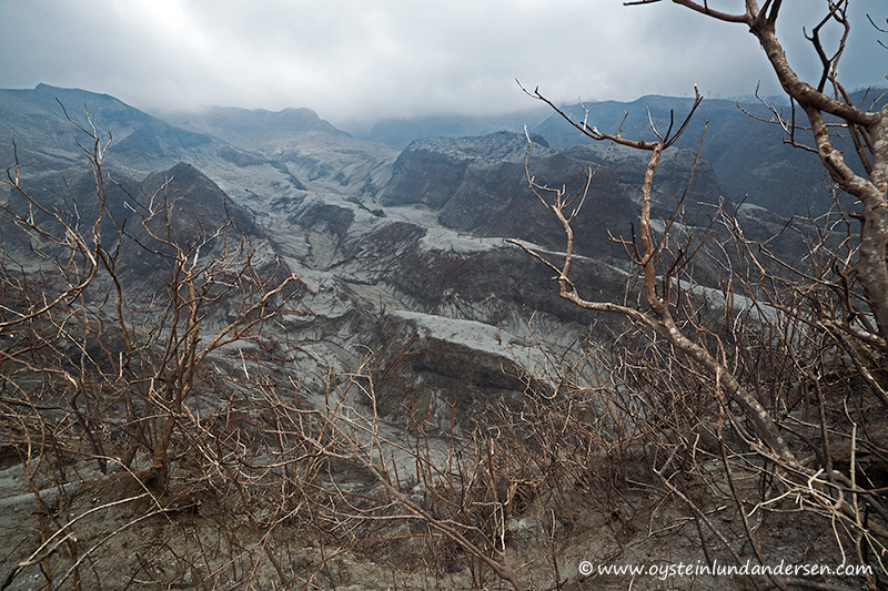 17. 2km from the crater area, and everything has been burnt or covered by deposits. (22th February - 12:04)