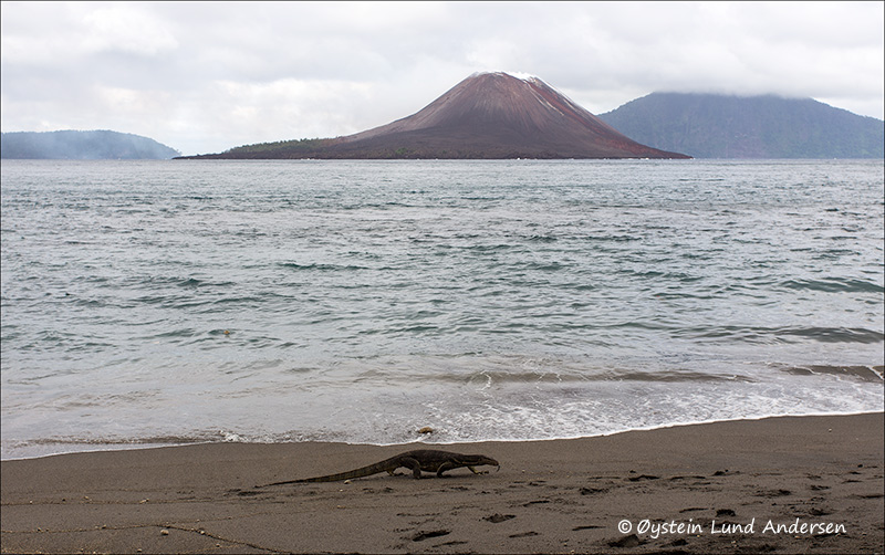 Krakatau-april-2013-(IMG_2950)