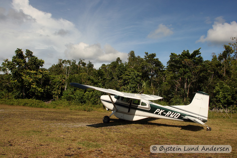 Cessna airplane from Tariku aviation on the grass-runway in Terablu.