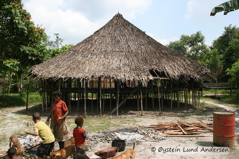 Traditional Lepki house in Terablu. Few of these excist today, as no new ones have been built in years, and the Lepki have started to build Ketengban tribe style houses instead. These houses can hold 30-40 people.