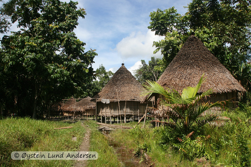 Ketengban style houses in Terablu.
