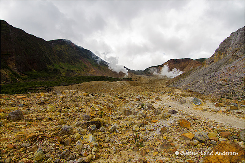 Panorama of the largly escavated inside of the Papandayan horseshoe-shaped crater.