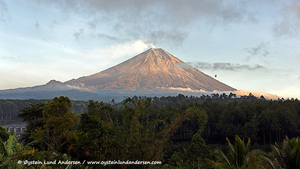Semeru-%20Volcano-September-2014-(IMG_5075)