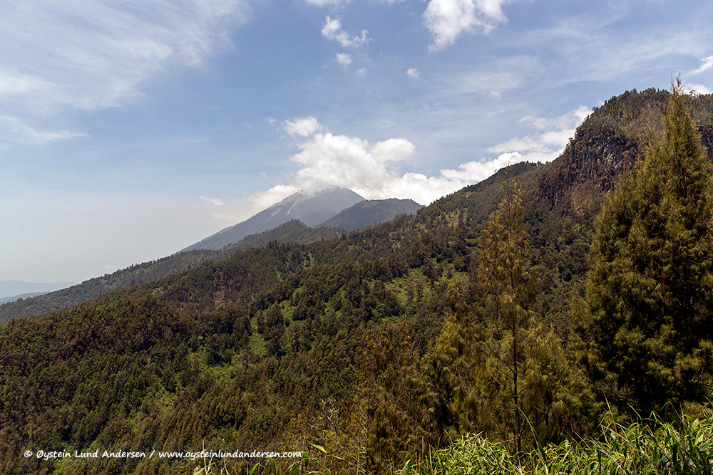 Semeru-volcano-october-2014-(IMG_5724)