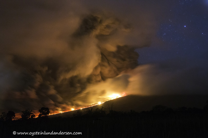 8. The pyroclastic flow travels to the foot of the volcano and releases a heavy load of ash.(12th January - 04:19)