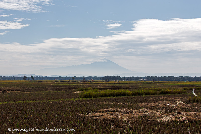 Slamet seen from the south