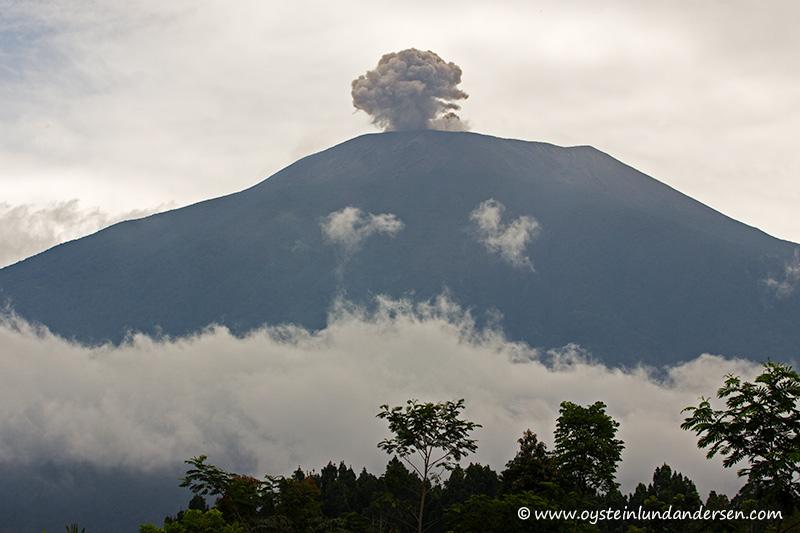 Slamet-volcano-indonesia-March-2014(IMG_8083)