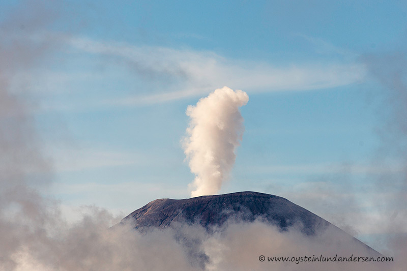 Semeru erupts in the morning. The eruption cloud seem to contain little or no ash, these days. (08:42)