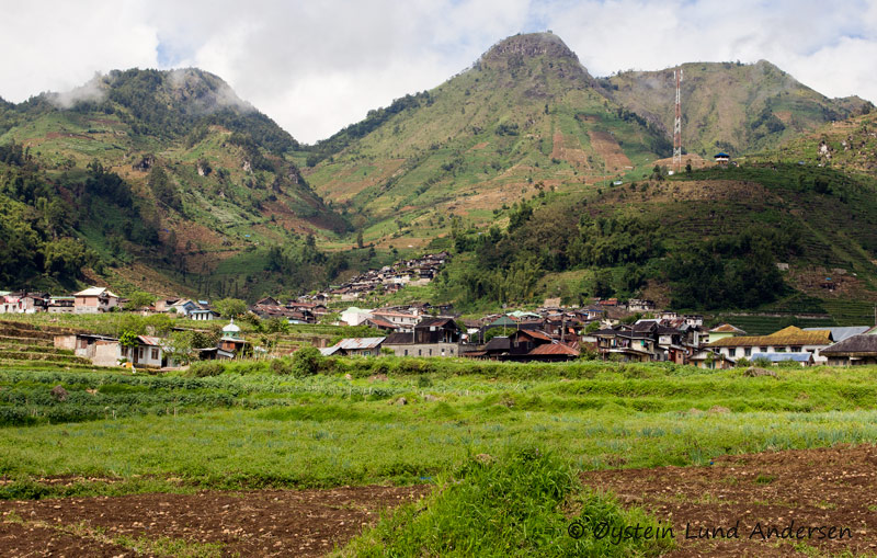 The Dieng Plataeu has good soils for farming, and potatoes from this part of Java is well known in Indonesia.