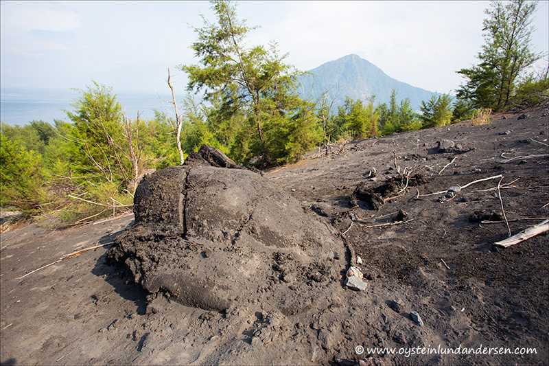 Krakatau-march 2013-(IMG_0610)