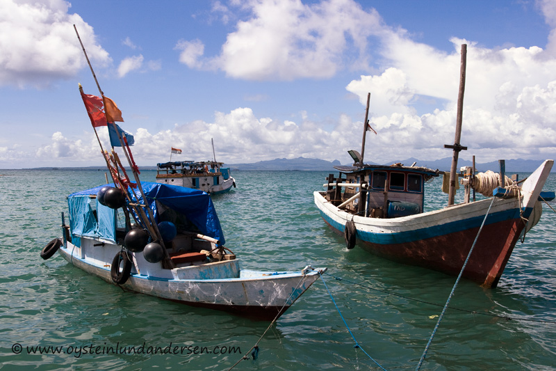 Traditional fishing vessels.
