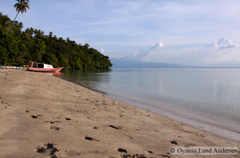 One of the fine beaches on the Bunaken islands