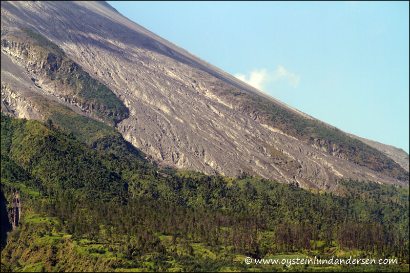 23. South-western slope of Merapi.