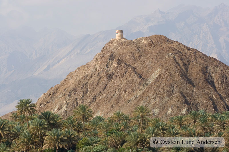 Oman_NizwaX9