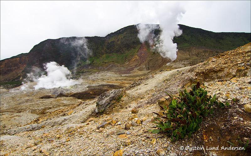 Kawah mas (golden crater) left, and kawah baru (new crater) right.