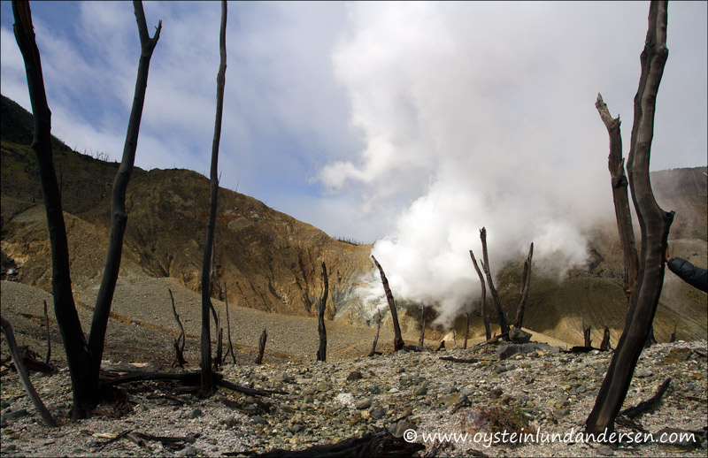 The kawah baru crater, that last erupted in 2002.