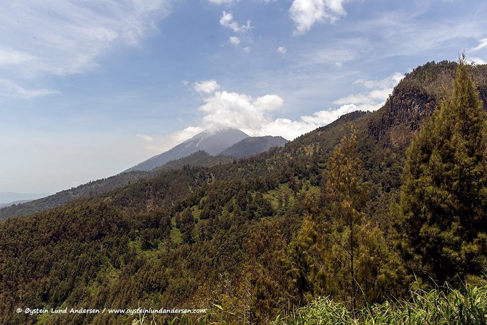 Semeru-volcano-october-2014-(IMG_5724)