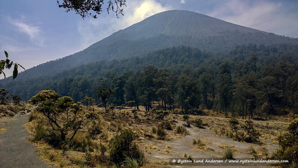 Semeru-volcano-october-2014-(WP_20141011_10_06_05)s