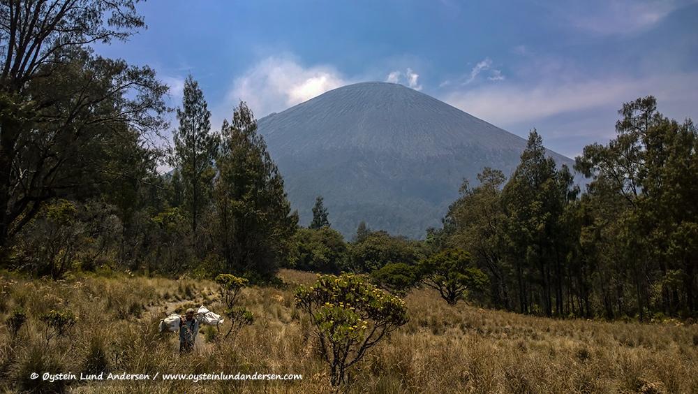 Semeru-volcano-october-2014-(WP_20141011_10_20_16)