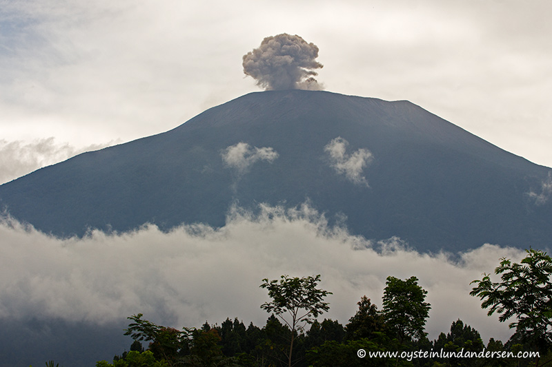 Slamet-volcano-indonesia-March-2014(IMG_8083)