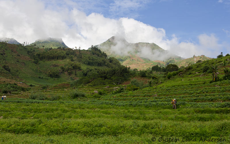 dieng_indonesia-x1