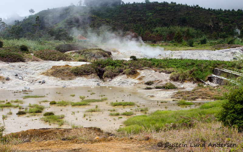 Steam rises from the Sikidang crater thermal area. Kawah Sikidang is one of several craters at Dieng that have produced phreatic eruptions during historical time.