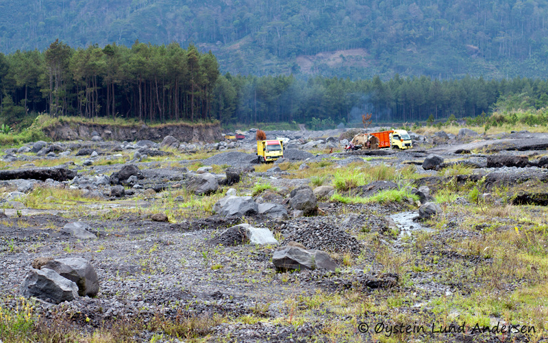 Trucks collecting fine volcanic sand/dust of at the base of Semeru. The sand is used locally to produce cement for house building, however mostly transported to large cirtes in the vicinity, like Malang or Surabaya, to be sold for the same purpose. The riverbed seen on the photo contains not only sand/ash brought by lahars from Semeru but also bigger volcanic blocks.
