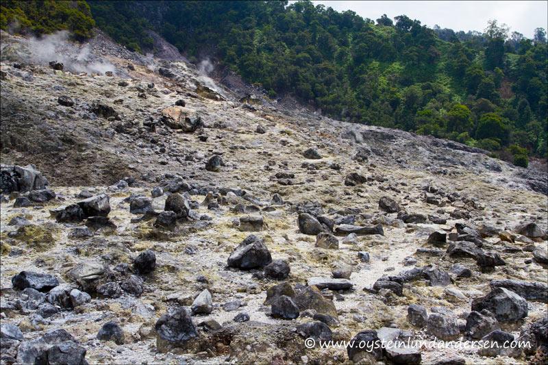 Landscape at Domas. (1th May 2012)