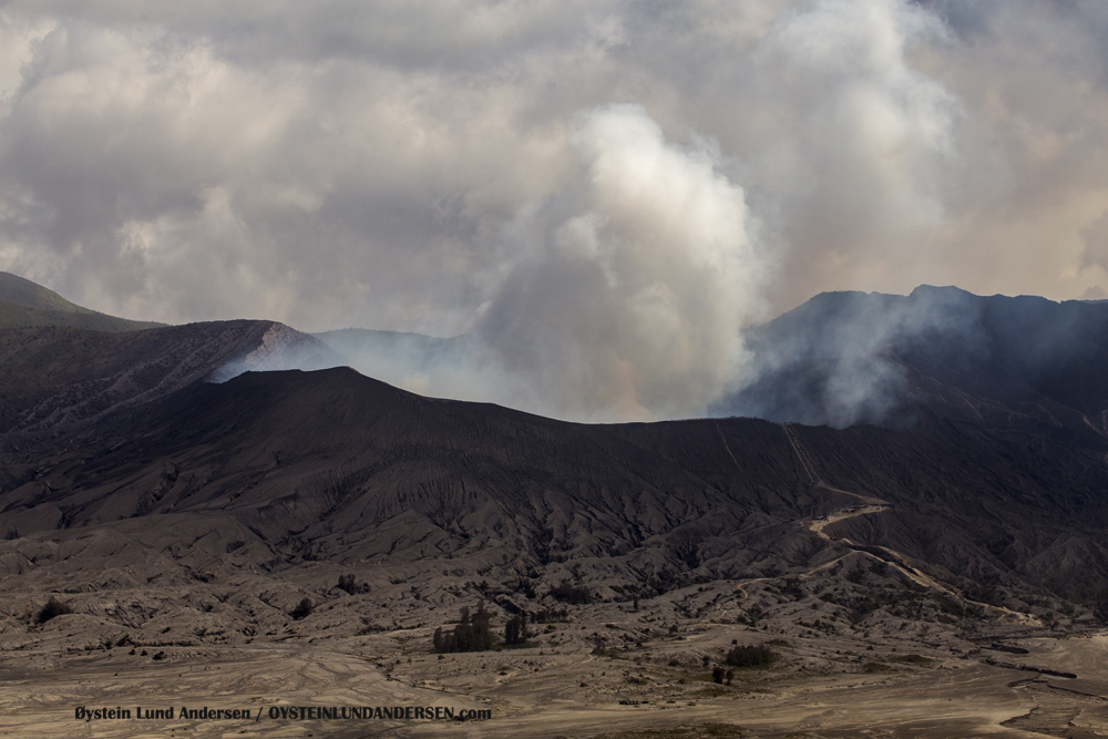 Bromo Tengger Indonesia Eruption Volcano March 2016