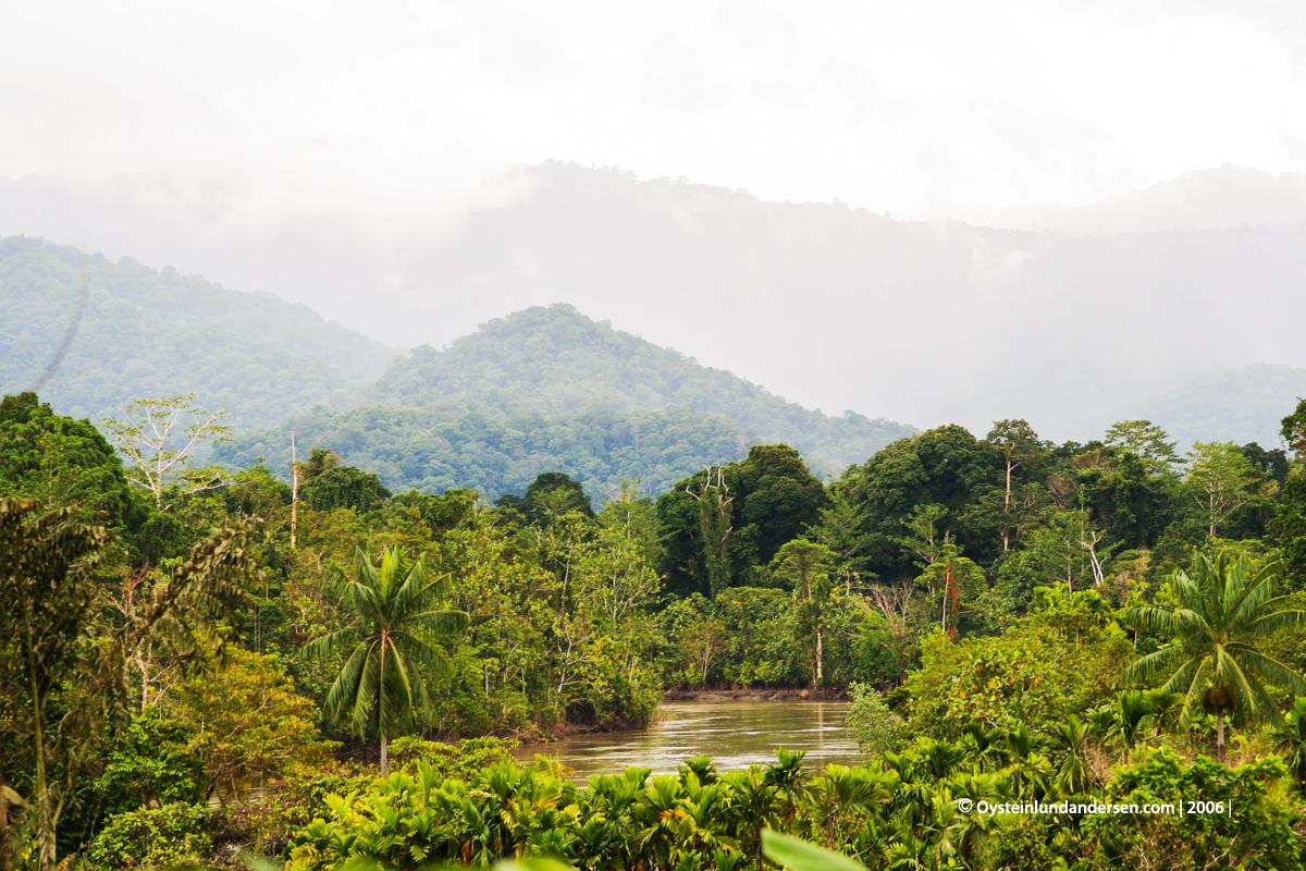 Kaure Aurina Lereh Papua rainforest Nawa-river 2006