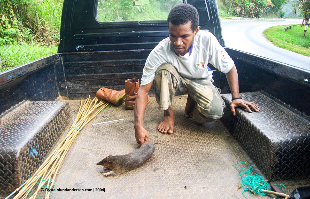 jayapura Entrop papua waena sentani westpapua sentani waena abepura jpp photo pictture 2003 2012